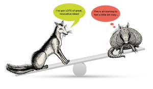 Fox & armadillo on a see saw